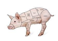 Cartel de la carta del corte de cerdo en francés Imagenes de archivo