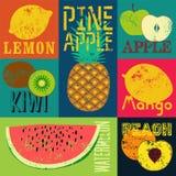 Cartel de la fruta del estilo del grunge del arte pop Colección de frutas retras Sistema del vector del vintage de frutas Imagen de archivo libre de regalías
