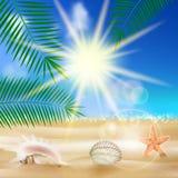 Cartel de la opinión de la playa. libre illustration