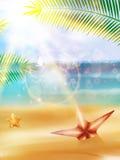 Cartel de la opinión de la playa. stock de ilustración
