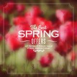 Cartel de la primavera Fotos de archivo libres de regalías