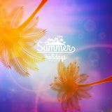 Cartel de la tipografía de la puesta del sol de la palmera Fotografía de archivo