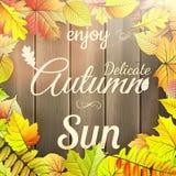 Cartel de la tipografía del otoño EPS 10 Imagen de archivo