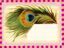 Cartel de la vendimia: marco de la pluma Fotografía de archivo