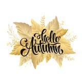 Cartel de las letras de la venta del otoño, descuento, tarjeta Fotografía de archivo