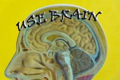 Cartel de motivación de la cita del cerebro imágenes de archivo libres de regalías