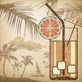 Cartel del cóctel Imagenes de archivo