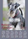 Cartel del calendario de pared por 2018 años con el perro de la foto La semana comienza domingo Fotografía de archivo libre de regalías