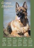Cartel del calendario de pared por 2018 años con el perro de la foto La semana comienza domingo Fotos de archivo