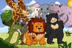 Cartel del reino animal stock de ilustración