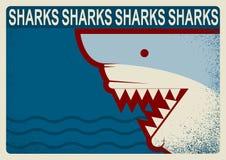 Cartel del tiburón Ejemplo del fondo del vector para el diseño Imagenes de archivo