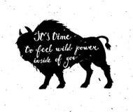 Cartel del vector con un bisonte Foto de archivo libre de regalías