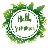 Cartel del verano con la hoja de palma Imagen de archivo