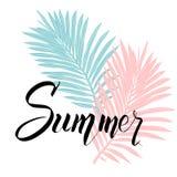 Cartel del verano con las letras tropicales de la hoja de palma y de la escritura ilustración del vector