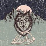 Cartel del vintage con el lobo en la Alaska Foto de archivo libre de regalías