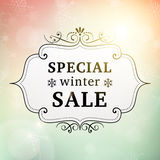 Cartel del vintage de la venta especial del invierno Foto de archivo