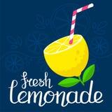 Cartel fresco de la limonada Foto de archivo libre de regalías