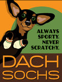 Cartel ilustrado de un perro basset Fotografía de archivo libre de regalías