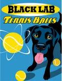 Cartel ilustrado de un perro negro del labrador retriever Fotografía de archivo libre de regalías