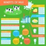 Cartel infographic de la disposición de la leche stock de ilustración