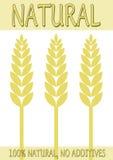 Cartel o escritura de la etiqueta natural del alimento ilustración del vector