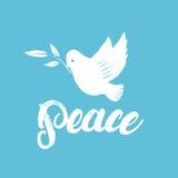 Cartel o tarjeta escrito mano de las letras de la caligrafía de la paz con la paloma Imagenes de archivo