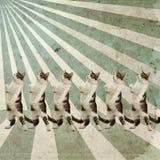 Cartel retro de los gatos del baile imágenes de archivo libres de regalías