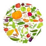 Cartel sano de la comida de las verduras del veggie orgánico, de la col sana fresca y de la comida del vegetariano stock de ilustración