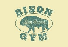 Cartel tipográfico del estilo del grunge del vintage de la silueta de Bison Gym, icono, logotipo, etiqueta, muestra, insignia Ilu stock de ilustración