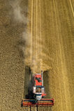 Cartel travaillant au champ de blé Photographie stock