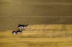 Cartel travaillant au champ de blé Photos libres de droits