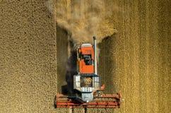 Cartel travaillant au champ de blé Photographie stock libre de droits