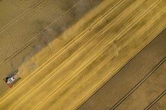 Cartel travaillant au champ de blé Photo stock