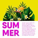 Cartel tropical de la palma del vector del viaje de las vacaciones de verano stock de ilustración