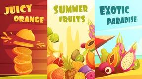 Cartel vertical de la historieta de las banderas de las frutas exóticas Imagen de archivo libre de regalías