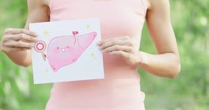 Cartelera del hígado de la salud de la toma de la mujer imagen de archivo libre de regalías