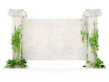 Cartelera horizontal de la antigüedad cubierta con la hiedra Foto de archivo libre de regalías