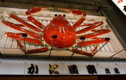 Cartelera móvil gigante del cangrejo en Dotombori, Osaka, Japón Foto de archivo