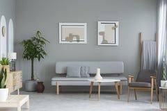 Carteles sobre el sofá gris en interior mínimo de la sala de estar con el pla imágenes de archivo libres de regalías