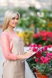 Cartella gradevole della tenuta del fiorista Fotografia Stock
