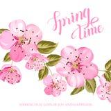 Cartellino marcatempo della primavera Fotografia Stock Libera da Diritti