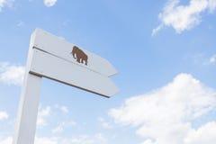 Cartello di legno bianco dell'elefante immagini stock