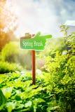 Cartello verde con la rottura di molla del testo scritta in, giorno di molla soleggiato immagini stock