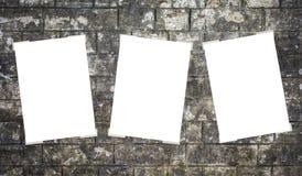 Cartello vuoto bianco tre Immagini Stock