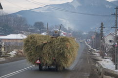 Carter with hay on the road in Bucovina Royalty Free Stock Photos