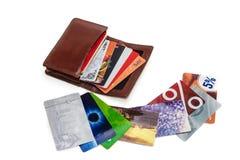 Cartera con las tarjetas del plástico del descuento Imagen de archivo libre de regalías
