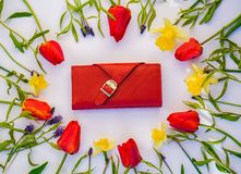 Cartera con los tulipanes en el fondo blanco foto de archivo libre de regalías