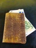 Cartera de cuero de la serpiente con euros Concepto de riqueza imagen de archivo libre de regalías