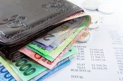 Cartera y dinero Imagen de archivo libre de regalías