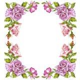 Cartes de voeux de peinture d'aquarelle Fond de Rose, composition en aquarelle Contexte de fleur Illustration d'isolement dessus illustration stock